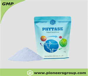 PHYTASE �?Powder and Liquid】
