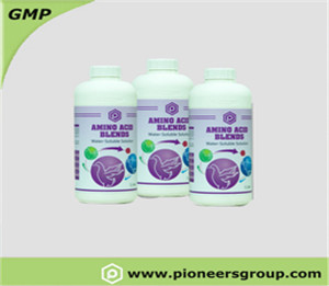 AMINO ACID BLANDS �?Powder and Liquid】